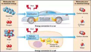 سیستم سوخت برای افزایش شتاب